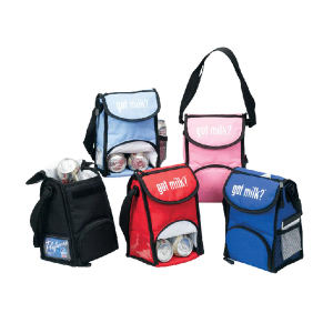 Promotional Lunch Kits-15b-cooler-bag