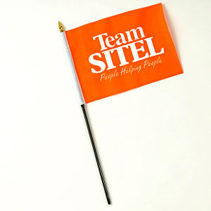 Polyester hand held flag,