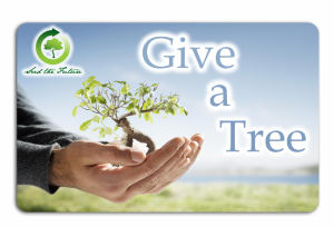 Promotional Pre-paid Phone Cards-Tree-C-02