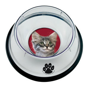 Promotional Pet Accessories-3765
