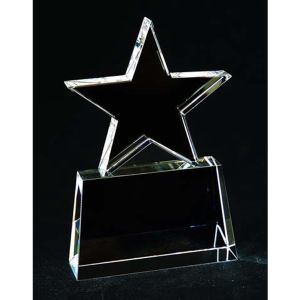 Promotional -Award-C262