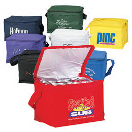 Promotional Picnic Coolers-BL320