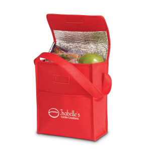 Promotional Picnic Coolers-BG126
