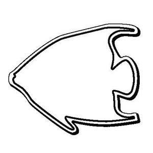Promotional -Fish5