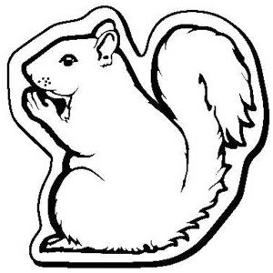 Promotional -Squirrel1
