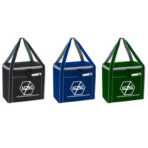 Promotional Picnic Coolers-COOLER-B931