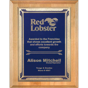 Promotional Plaques-AWP704-43