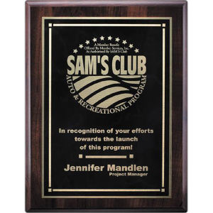 Promotional Plaques-AWP713-4112