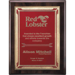 Promotional Plaques-AWP713-43