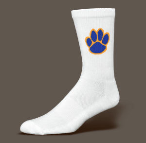 Promotional Socks-SockS005