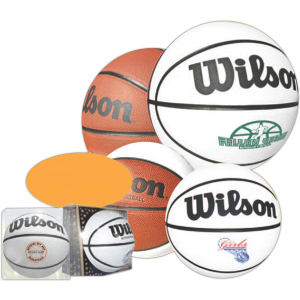 Promotional Basketballs-WL-SIGB
