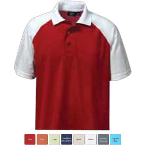 Promotional Polo shirts-1343-AQD