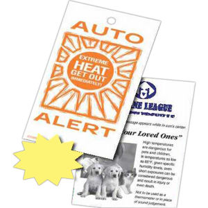 Auto alert reveals a