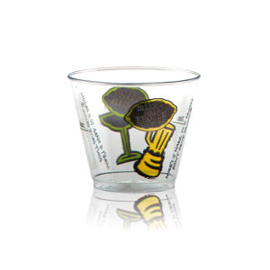 Promotional Drinking Glasses-H-C5R