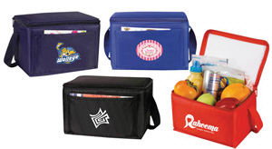Promotional Picnic Coolers-COOLER BAG E41