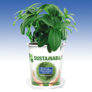 Promotional Plants-WG12