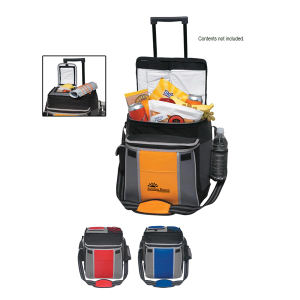 Promotional Picnic Coolers-3574