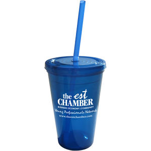 Promotional Drinking Glasses-DT500