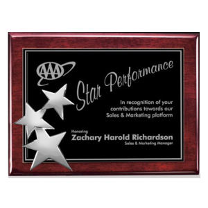 Promotional Plaques-AWP0205-C