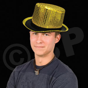 Gold sequin top hat,