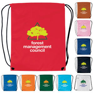 Promotional Backpacks-15039