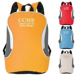 Promotional Backpacks-15504